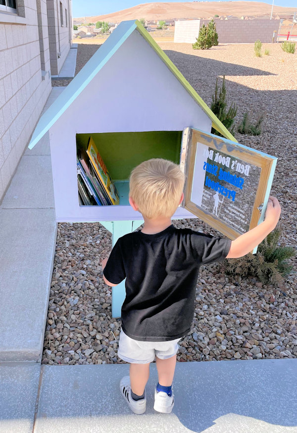 Young boy looking at books in Little Free Library.